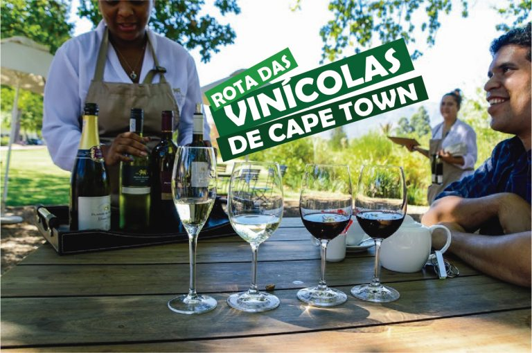Read more about the article Rota das vinícolas de Cape Town