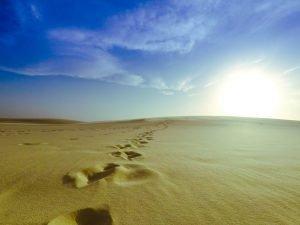 caminho até o sol lençóis maranhenses
