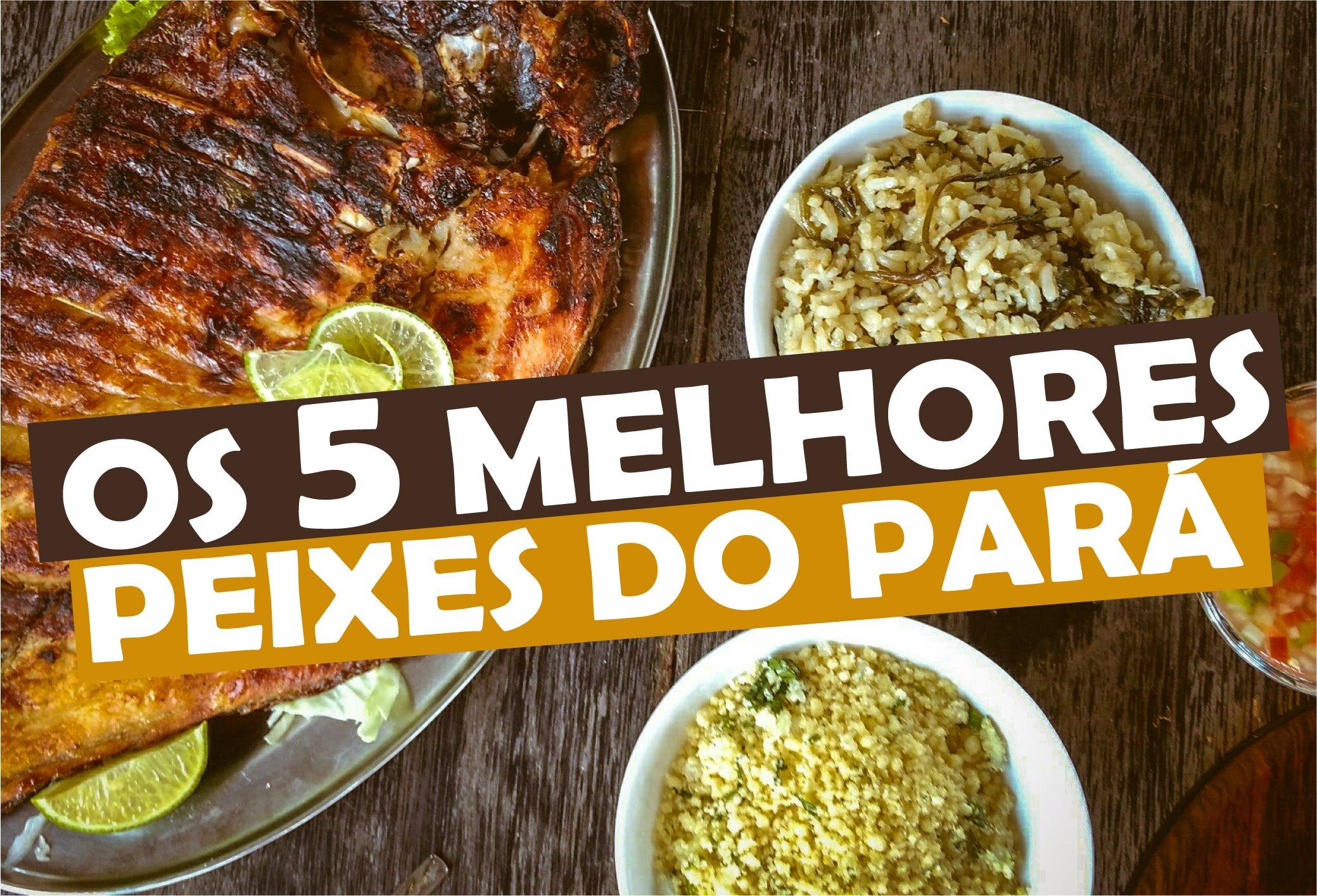 You are currently viewing Os 5 Melhores Peixes do Pará