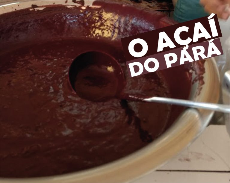 Read more about the article Polpa de Açaí do Pará – comida típica do Pará