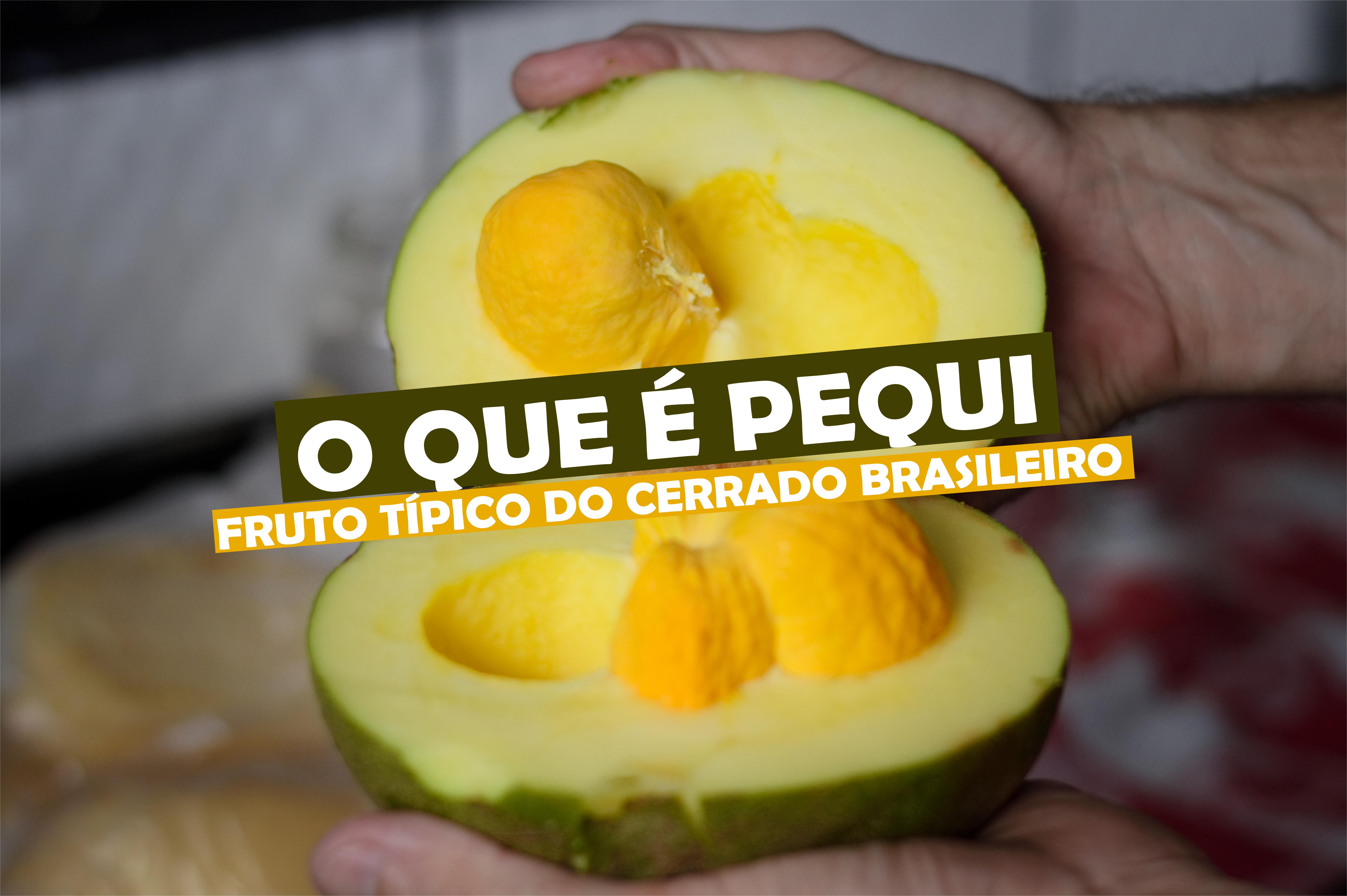 You are currently viewing O Que é Pequi? Pequi é Fruta? Conheça Essa Iguaria!