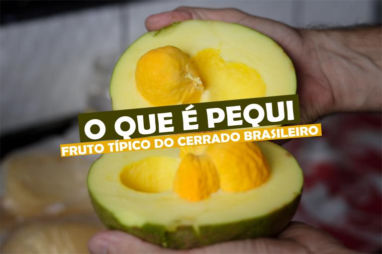 Read more about the article O que é Pequi, fruto típico do cerrado brasileiro