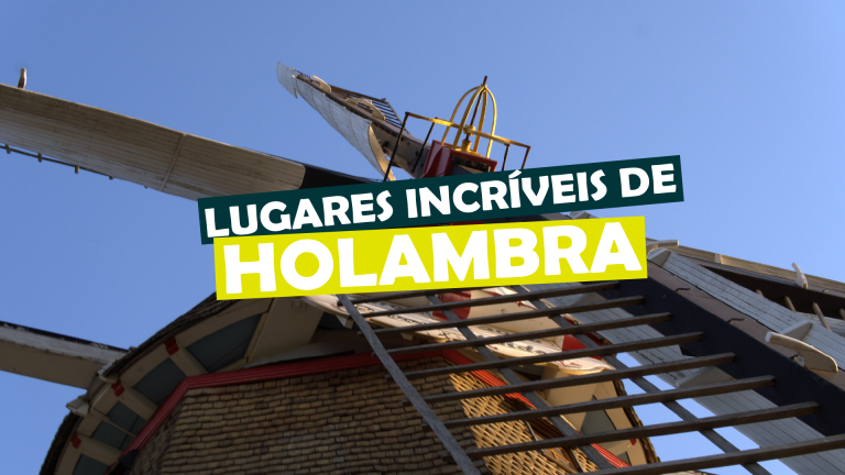 Read more about the article lugares incríveis de holambra