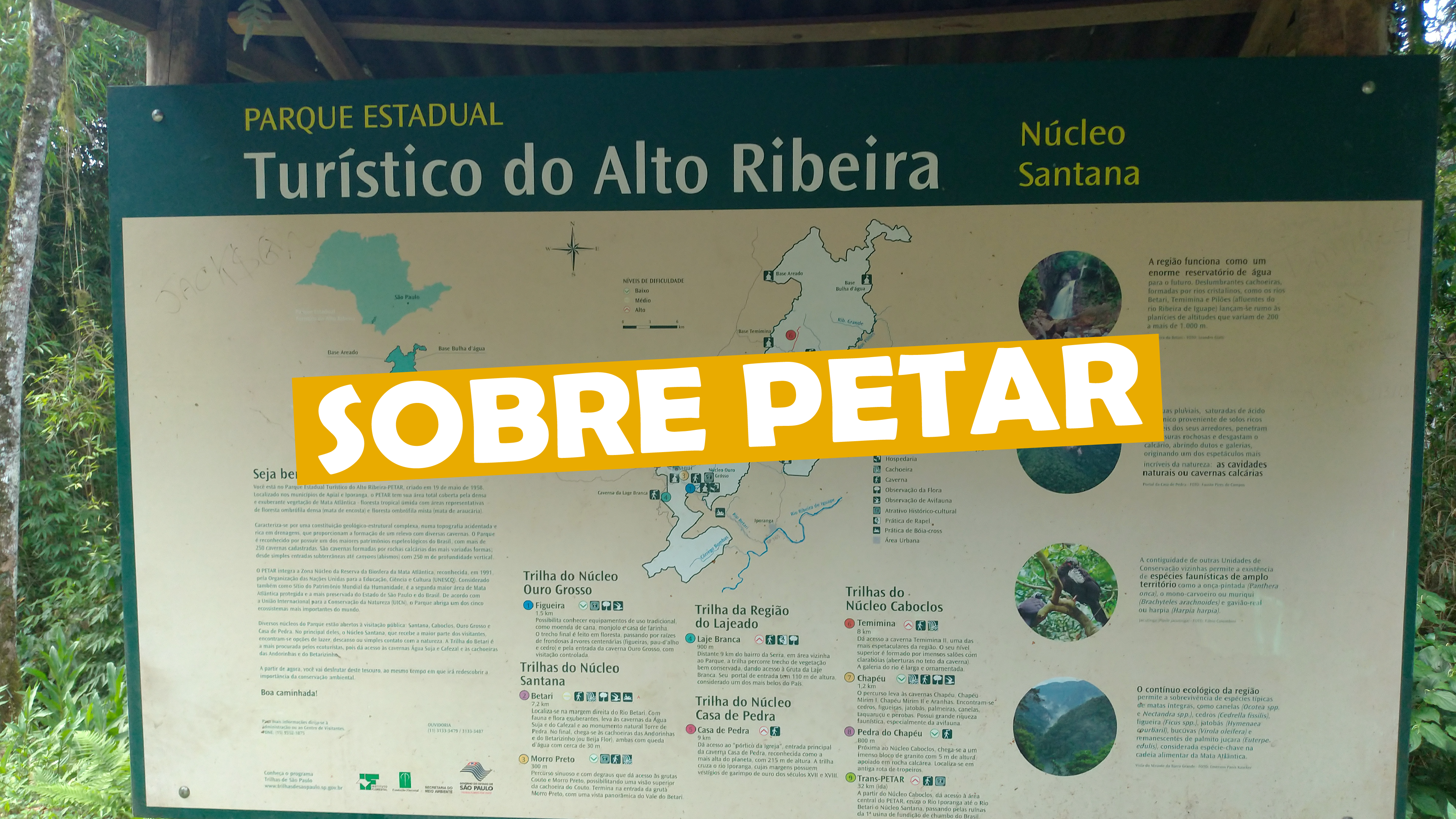 You are currently viewing Sobre Petar